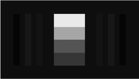 DVE PLUGE w_GRAY SCALE.jpg