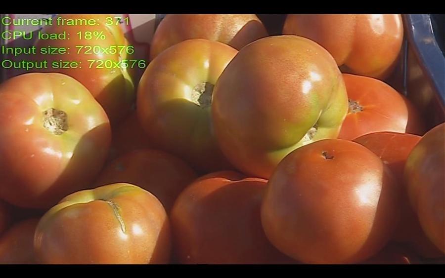 tomates576.jpg