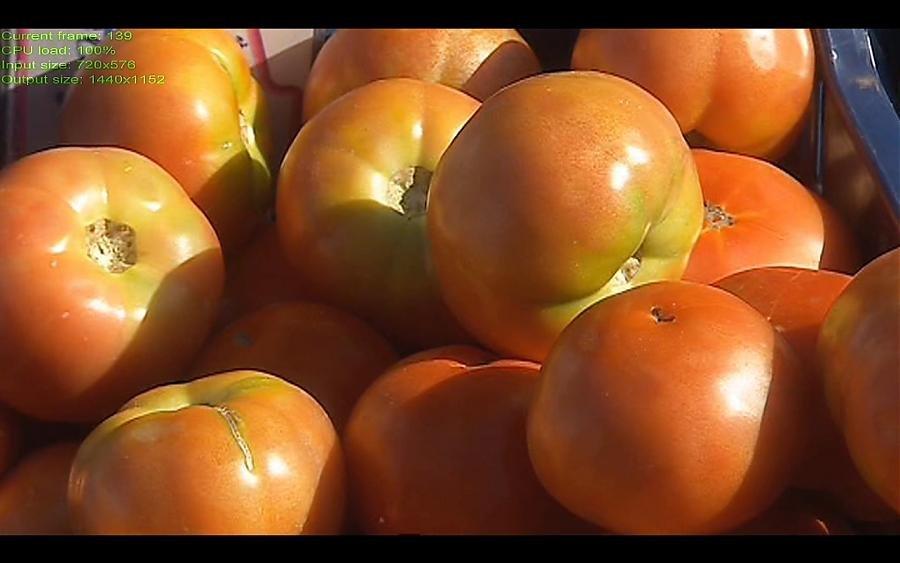 tomates2X.jpg